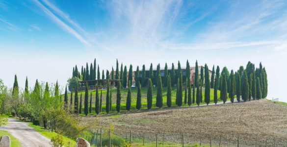 val d'orcia_512072473