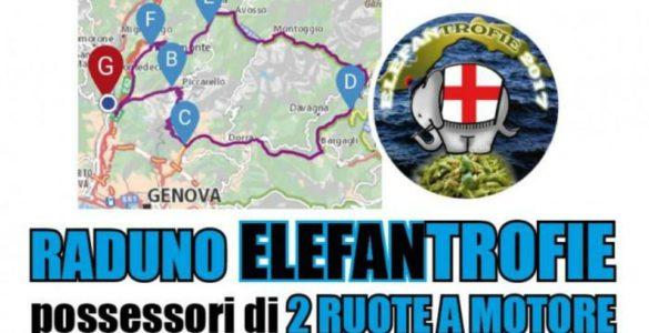 eventi-motoraduni-liguria-elefantrofie