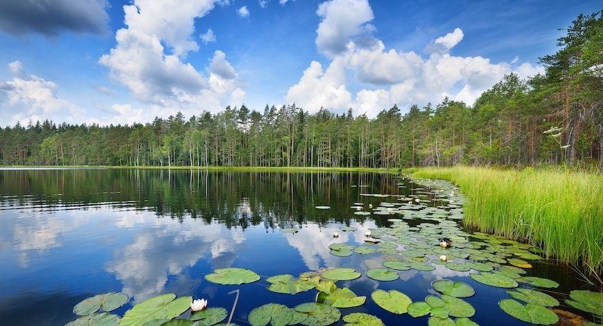 Alla scoperta della Finlandia in moto: il lago Saimaa