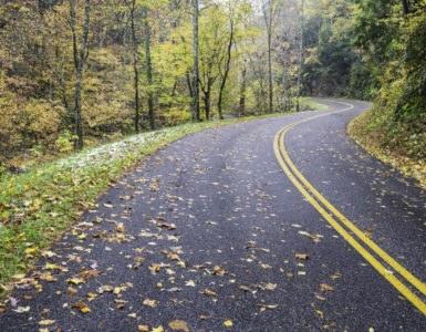 shutterstock 229006402 385x300 - Great River Road, un motopercorso nella natura americana