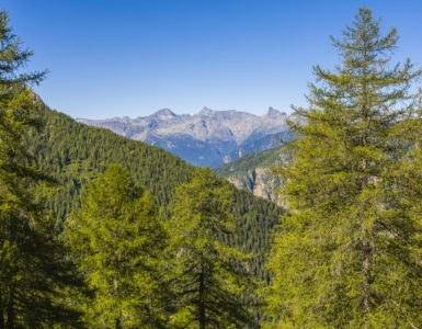 ayas shutterstock 585780338 385x300 - Col Tze Core, lungo le vette della Valle d'Aosta in moto