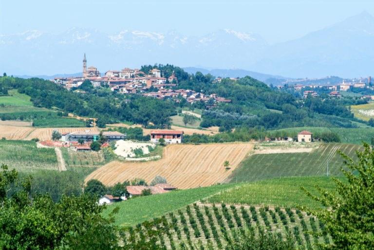 shutterstock 576002254 768x514 - In moto nel Monferrato, tra le strade del Piemonte UNESCO