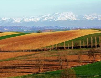 shutterstock 599618150 385x300 - In moto nel Monferrato, tra le strade del Piemonte UNESCO