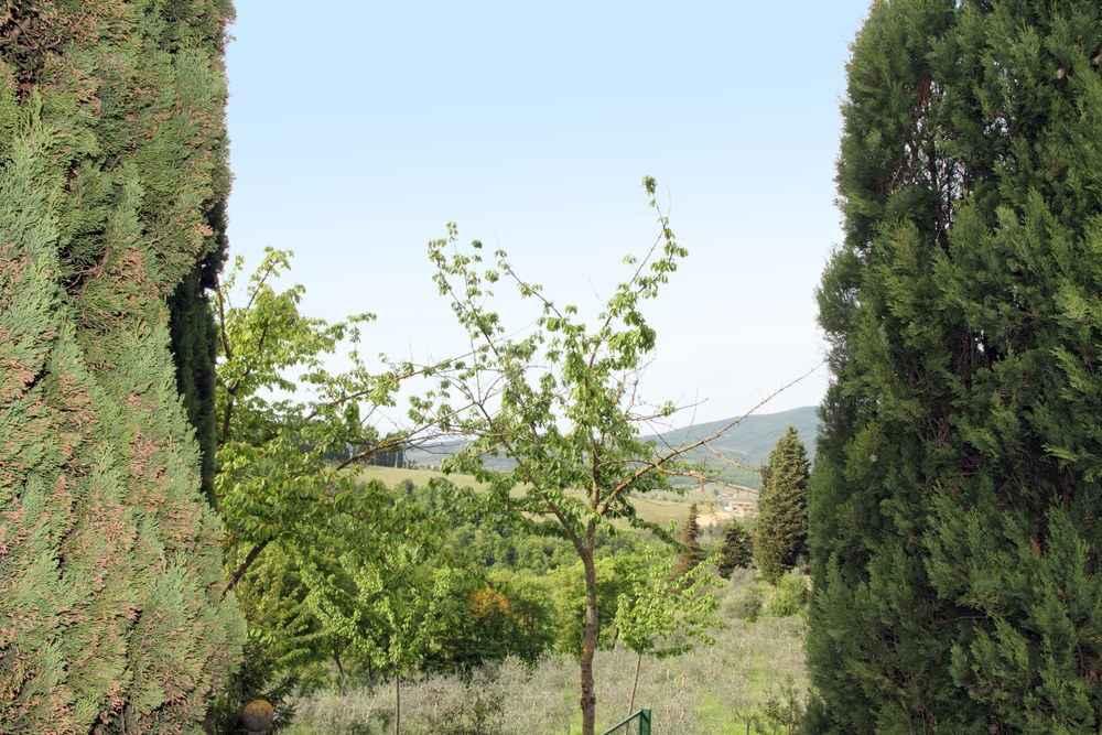 Greve in Chianti, Toscana