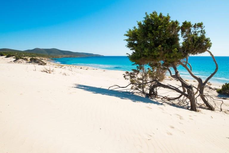 shutterstock 434901457 768x512 - Itinerario in moto lungo la costa meridionale della Sardegna