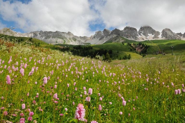 shutterstock 526229242 768x510 - Trentino Alto Adige: in moto nella Valle dei Mocheni attraversando il Passo Redebus