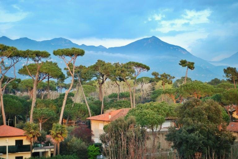 shutterstock 573224317 768x514 - Dalle Alpi Apuane alla Versilia: un giorno in moto alla scoperta della Toscana