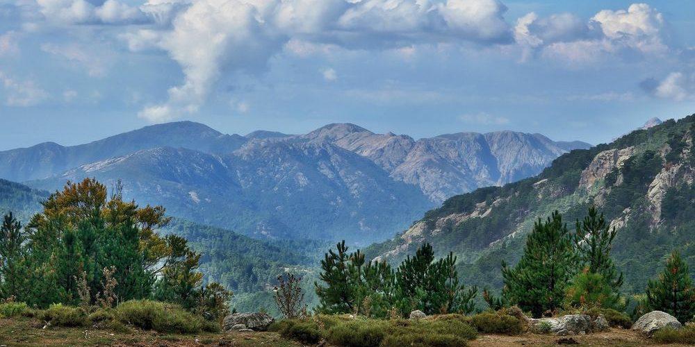 Col de Vergio, il passo più alto della Corsica