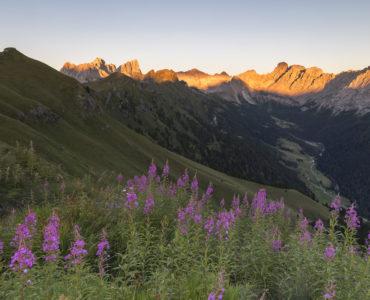 estate in Trentino. Tramonto in malghe © Trentino – A. Gruzza copia