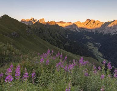Tramonto in malghe © Trentino – A. Gruzza copia