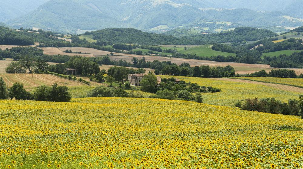 Monte Nerone, Cagli