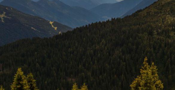 Passo Daone/Valli Giudicarie