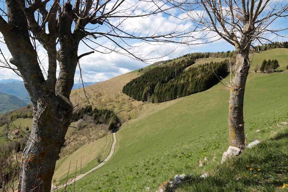 colli San Fermo