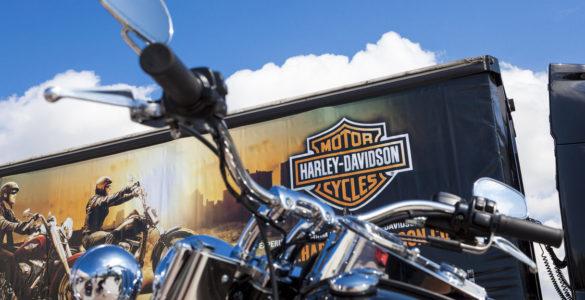 Harley Davidson vendite